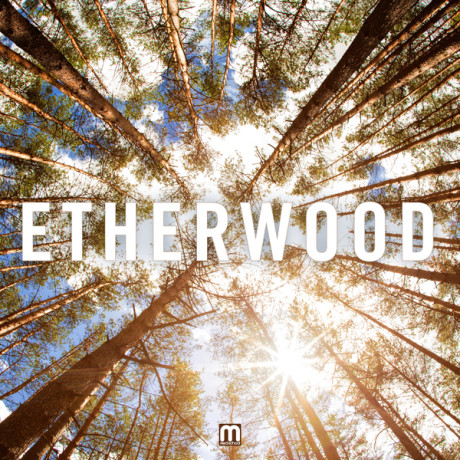 Etherwood – Begin By Letting Go