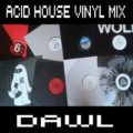 DAWL: Acid House Vinyl Mix