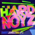 DJ Hardnoyz - Sweet Oldskool Jungle - Pt3