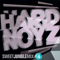 DJ Hardnoyz – Oldskool Jungle (Pt.4)